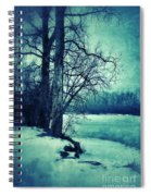 Snowy Woods By A Lake Spiral Notebook