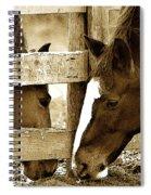 So Close... Spiral Notebook