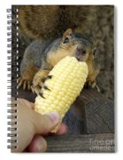 So Much Sweet Corn So Little Time Spiral Notebook