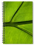 So Vein Spiral Notebook