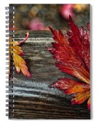 Soaked Leaves Spiral Notebook