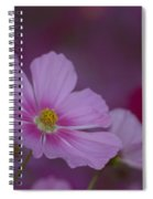 Soft And Gentle  Spiral Notebook
