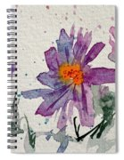 Soft Asters Spiral Notebook
