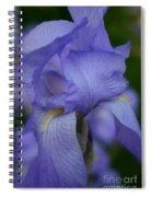 Soft Petals Spiral Notebook