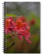 Soft Red Rhodies Spiral Notebook