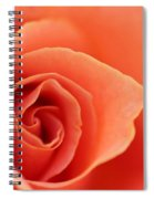Soft Rose Petals Spiral Notebook