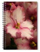 Soft Ruffles Spiral Notebook