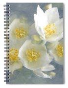 Softly Awake My Heart Spiral Notebook