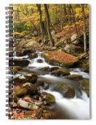 Softly Flowing Spiral Notebook