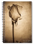 Solitaire Rose 2.0 Spiral Notebook