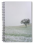 Solitary Tree In Winter Spiral Notebook
