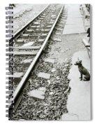 Solitude In Hanoi Spiral Notebook