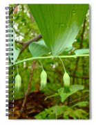 Solomon's Seal Wildflower - Polygonatum Commutatum Spiral Notebook