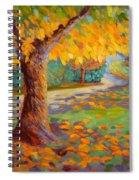 Solstice Glow Spiral Notebook