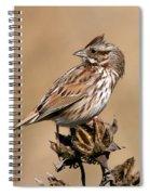 Song Sparrow Spiral Notebook