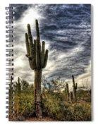 Sonoran Desert Iv Spiral Notebook