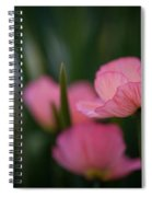 Sordid Poppies Spiral Notebook