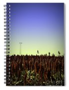 Sorghum Fields Forever Spiral Notebook