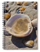 Sos 3 Spiral Notebook