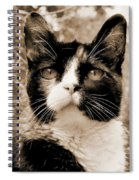 Souls Great And Small 2 Spiral Notebook