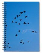 South Bound Spiral Notebook