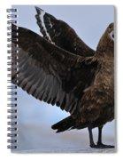 South Polar Skua Spiral Notebook