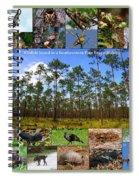 Southeastern Pine Forest Wildlife Poster Spiral Notebook