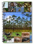 Southeastern Pine Forest Wildlife Poster Spiral Notebook