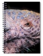 Southern Naked-tail Armadillo Spiral Notebook