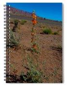 Southwest Wildflower Spiral Notebook