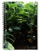 Soybean Leaves Spiral Notebook