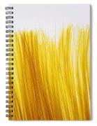 Spaghetti Spiral Notebook
