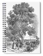 Spain: Orange Tree Spiral Notebook