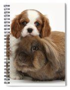 Spaniel Pup With Rabbit Spiral Notebook