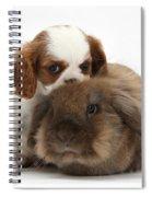 Spaniel Puppy And Rabbit Spiral Notebook