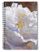 Sparkling Spiral Notebook