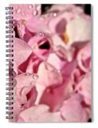 Sparkling Spring Spiral Notebook