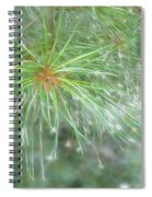 Sparkly Pine Spiral Notebook