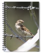 Sparrow - Protected By Razor Wire Spiral Notebook