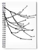 Speaking To Heaven Spiral Notebook