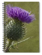 Spear Thistle With Texture Spiral Notebook