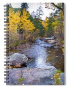Special Place In The Woods  Spiral Notebook