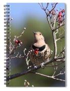 Speck Spiral Notebook