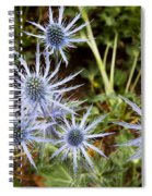 Spectacular Spiral Notebook
