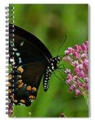Spicebush Swallowtail Din039 Spiral Notebook