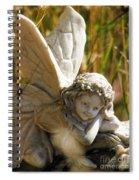 Spider Fairy Spiral Notebook