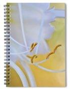 Spider Lily 2 Spiral Notebook