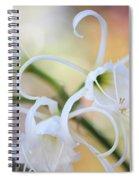 Spider Lily 3 Spiral Notebook