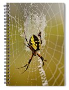 Spider Power Spiral Notebook