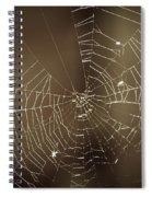 Spider Web 1.0 Spiral Notebook